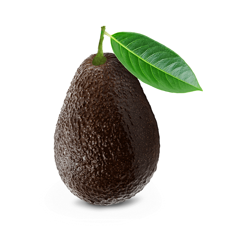 Avocado - USA