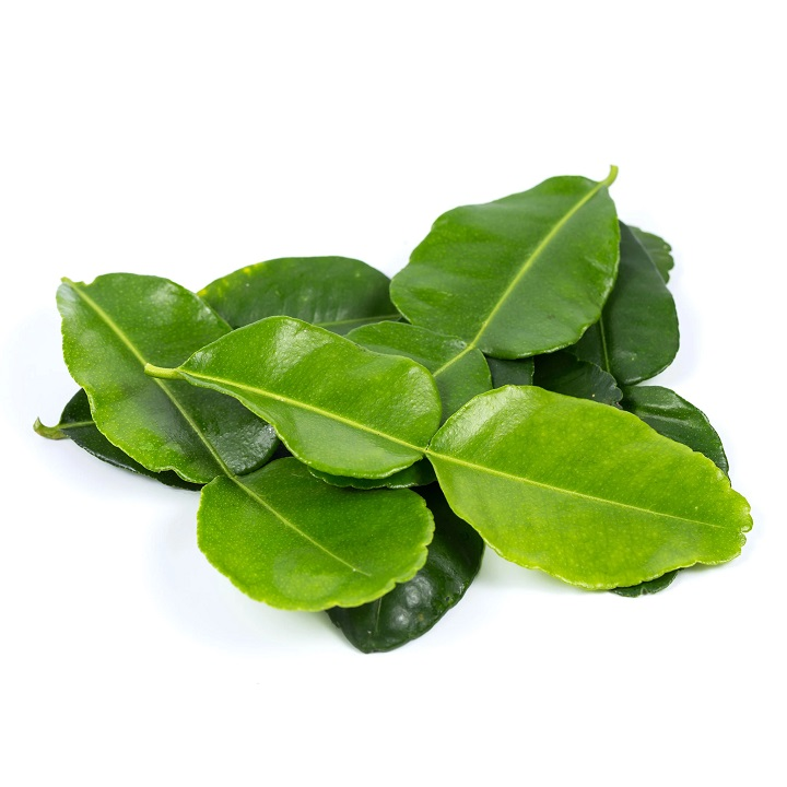 Lemon Leaves - Imported