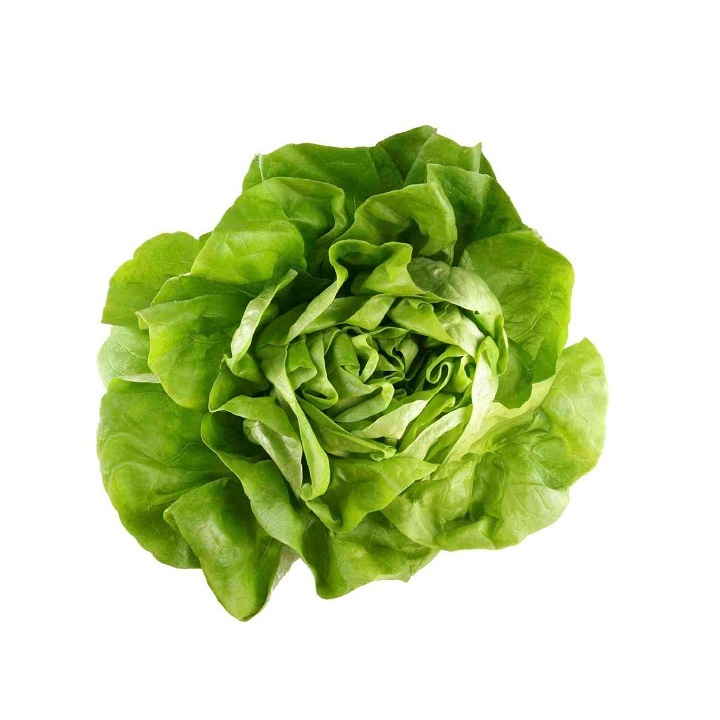 Lettuce (Boston) - Imported