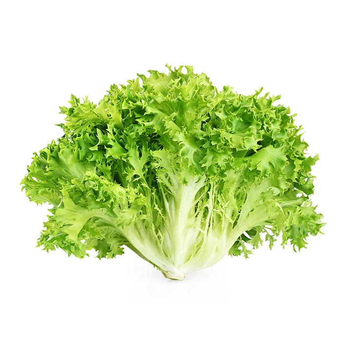 Lettuce (Frisee) - Imported