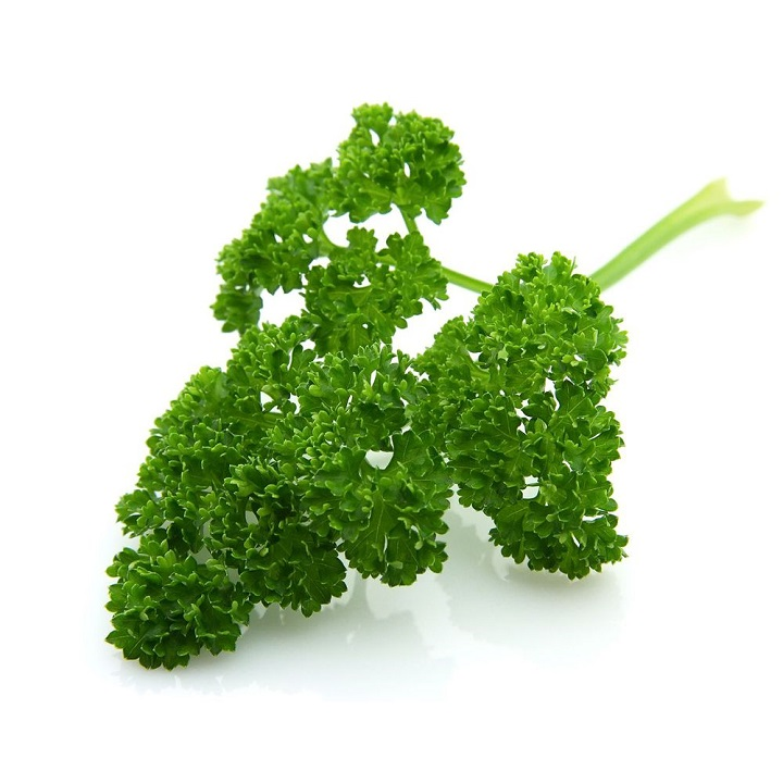 Parsley (Curly) - Imported