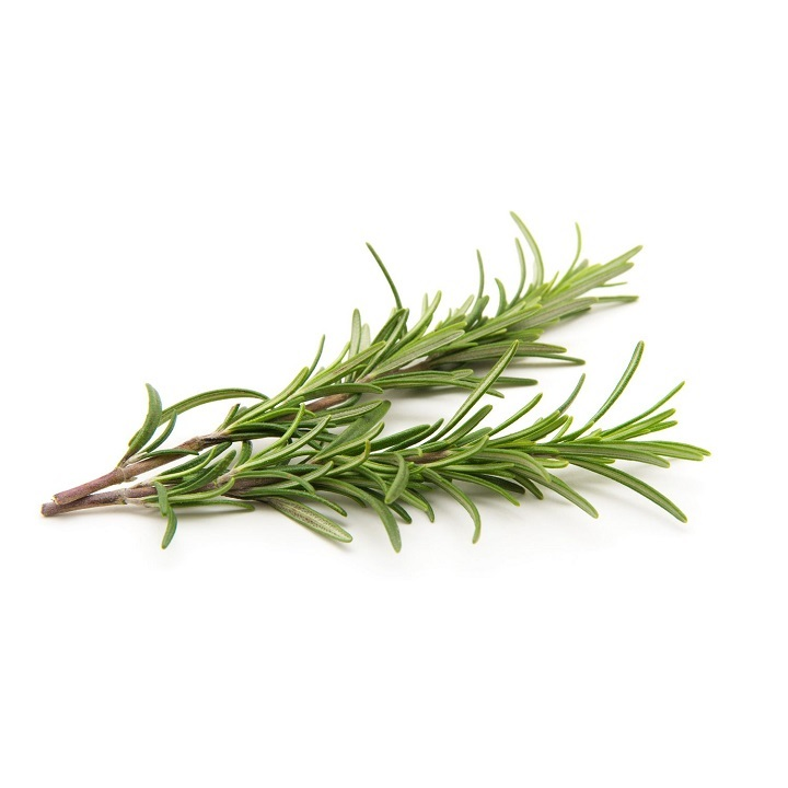 Rosemary – Imported